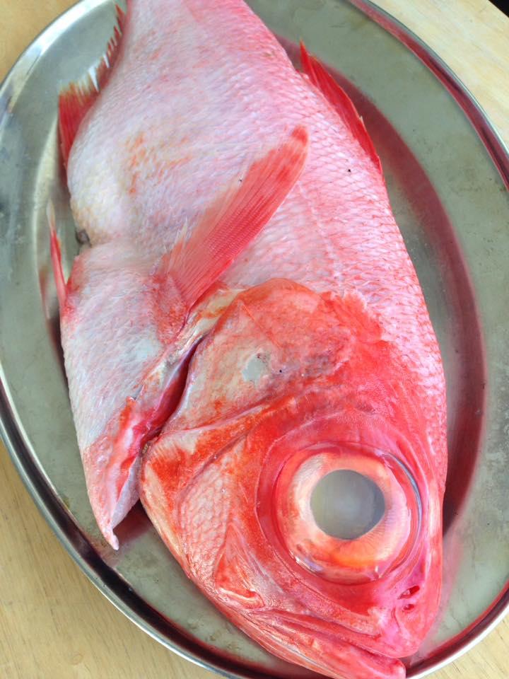 Fresh Alfonsino Fish: Coriander Lime Kitchen's Test Kitchen